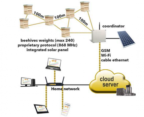 Bee Hives Monitoring System